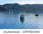russell  new zealand  29 jul... | Shutterstock . vector #1397001434