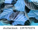 blue foliage close up in the... | Shutterstock . vector #1397070374