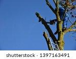 hauts de france france november ... | Shutterstock . vector #1397163491