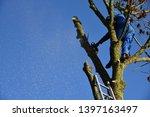 hauts de france france november ... | Shutterstock . vector #1397163497
