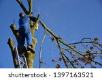 hauts de france france november ... | Shutterstock . vector #1397163521