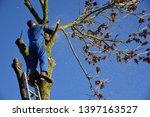 hauts de france france november ... | Shutterstock . vector #1397163527