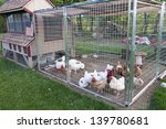 Small Chicken Coop And Fenced...
