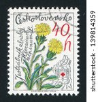 Small photo of CZECHOSLOVAKIA - CIRCA 1979: stamp printed by Czechoslovakia, shows Alpine Hawkweed, circa 1979