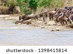 crossing kenya. national park.... | Shutterstock . vector #1398415814