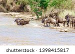 crossing kenya. national park.... | Shutterstock . vector #1398415817