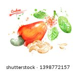 watercolor illustration of... | Shutterstock . vector #1398772157