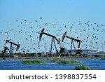 oil pump and a beautiful bird   Shutterstock . vector #1398837554