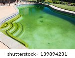 Back Yard Swimming Pool Behind...