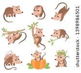 cute opossums animals in... | Shutterstock .eps vector #1398986501