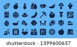 vegetarian icon set. 32 filled... | Shutterstock .eps vector #1399600637