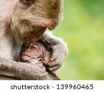Stock photo love 139960465