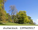 parkland trees in spring with... | Shutterstock . vector #1399605017