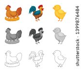 isolated object of breeding and ... | Shutterstock .eps vector #1399876484