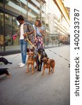 Stock photo dog walking on leash with couple professional dog walker on the street 1400233787