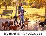 Stock photo professional dog walker happy group of dogs with woman dog walker enjoying in walk outdoors 1400233811