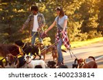 Stock photo man and woman dog walkers with group dog enjoying in park 1400233814