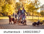 Stock photo professional women s walker enjoying with dogs while walking outdoors 1400233817