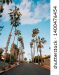 palm trees and street near... | Shutterstock . vector #1400476454