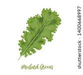 fresh curly mustard green... | Shutterstock .eps vector #1400668997