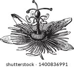 a picture is showing flower.... | Shutterstock .eps vector #1400836991