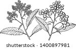 in this picture of the branch... | Shutterstock .eps vector #1400897981