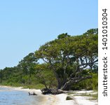 the coast of gulf breeze in... | Shutterstock . vector #1401010304