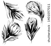 large set with a large protea... | Shutterstock .eps vector #1401057011