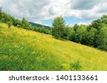 grassy forest glade on the hill ... | Shutterstock . vector #1401133661