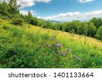 grassy forest glade on the hill ... | Shutterstock . vector #1401133664