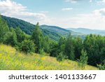 grassy forest glade on the hill ... | Shutterstock . vector #1401133667