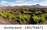 Vineyards La Geria Lanzarote Most - Fine Art prints