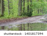 puddles in spring deciduous... | Shutterstock . vector #1401817394