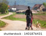 Stock photo woman walking with stroller and dog outdoors in nature on a rural road sunny day in countryside 1401876431