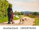 Stock photo woman walking with stroller and dog outdoors in nature on a rural road sunny day in countryside 1401876434