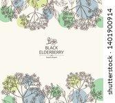 background with elderberry... | Shutterstock .eps vector #1401900914