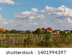 vineyard on the outskirts of... | Shutterstock . vector #1401994397