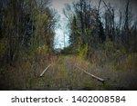 Old Abandoned Rail Road Tracks...