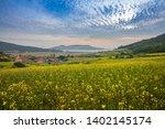 yellow rape flower field ...   Shutterstock . vector #1402145174