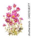 claret garden flowers isolated... | Shutterstock . vector #1402518377