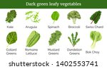 dark green leafy vegetables ... | Shutterstock .eps vector #1402553741