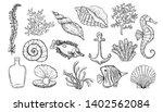 sea shell  seaweed  anchor ... | Shutterstock .eps vector #1402562084