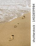 summer background for design of ... | Shutterstock . vector #1402859984