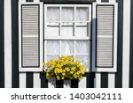 "colored windows of ""costa nova... 