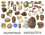 hand drawn set of colorful... | Shutterstock .eps vector #1403167574