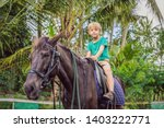 boy horseback riding ... | Shutterstock . vector #1403222771