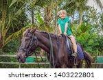 boy horseback riding ... | Shutterstock . vector #1403222801