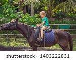boy horseback riding ... | Shutterstock . vector #1403222831