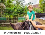 boy horseback riding ... | Shutterstock . vector #1403222834