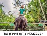 boy horseback riding ... | Shutterstock . vector #1403222837